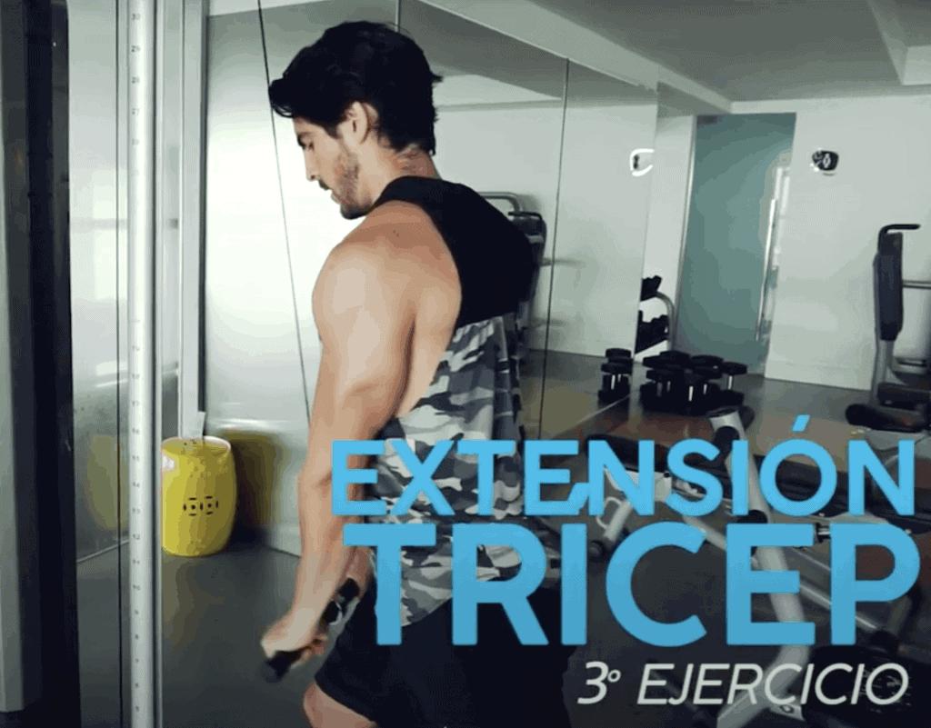masa muscular ejercicios tricep