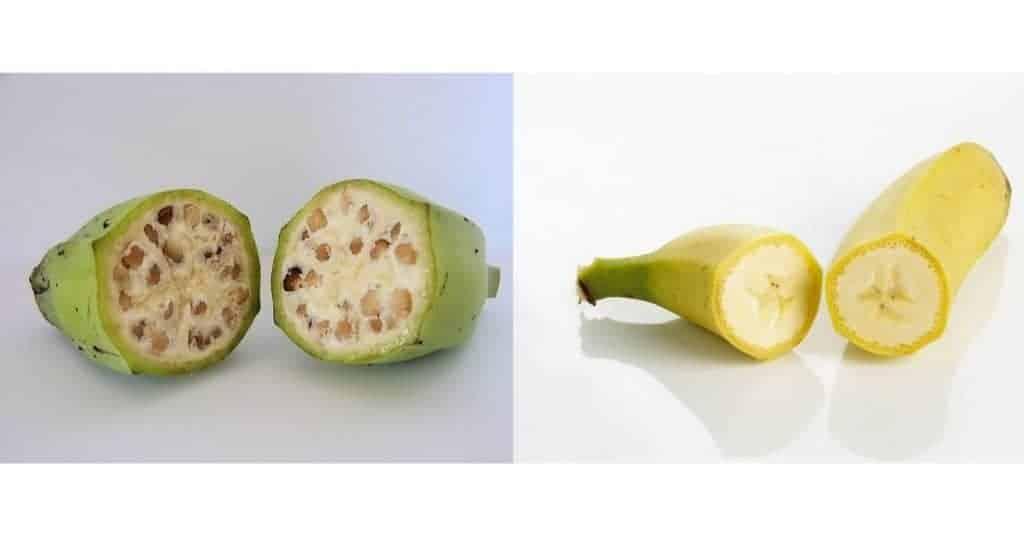 fruta en keto