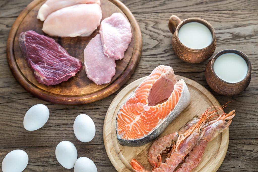 alimentos altos en proteína